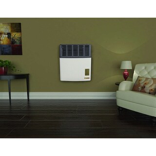 Ashley Direct Vent Gas Heater