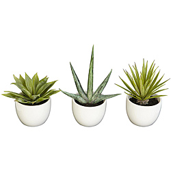 Set of 3 Southwest Collection Agave Silk Plants