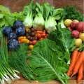 Freshness Farms Family Fruit and Vegetable Bundle